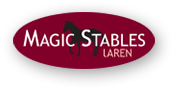 Logo Magic Stables